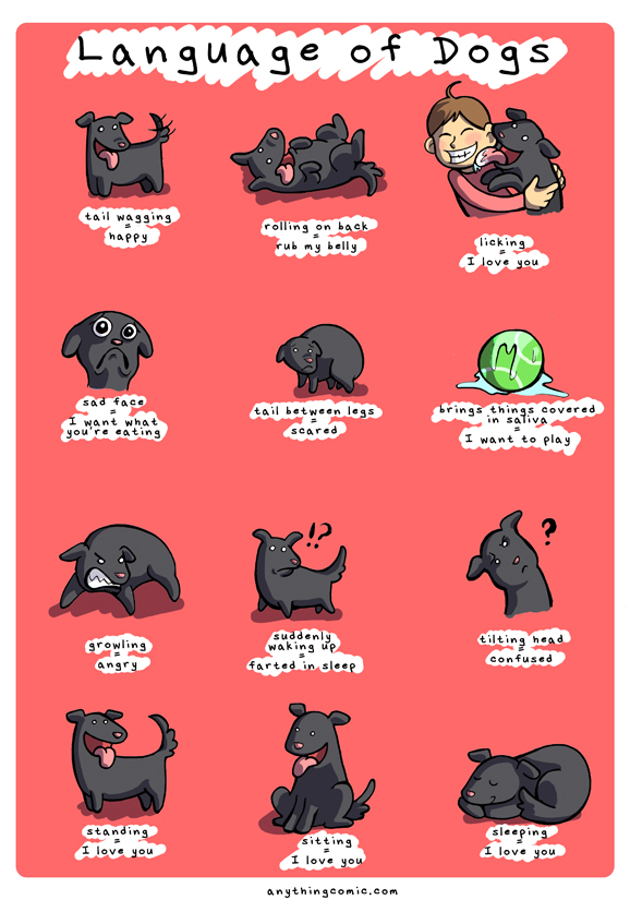 Language of Dogs